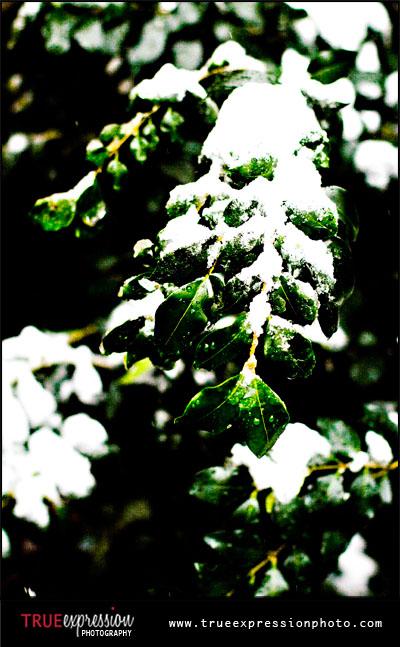 atlanta snowstorm