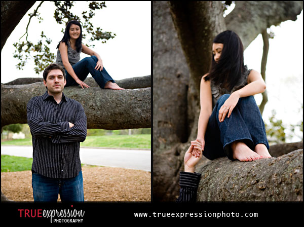engagement photo with girl sitting in a tree