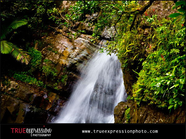 Puerto Rico's El Yunque Rain Forest has the beautiful La Mina Falls