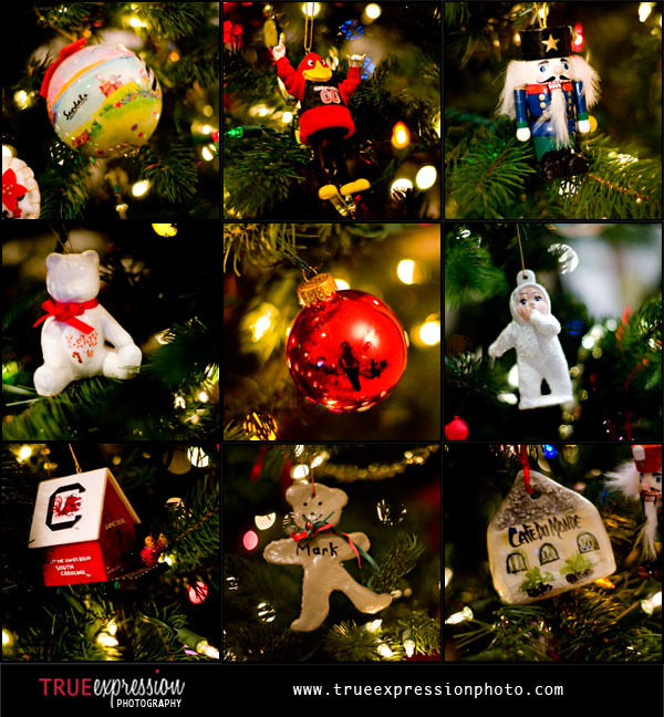 a variety of Christmas Ornaments