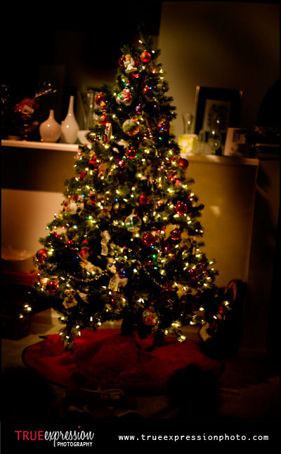 photograph of a pretty Christmas tree